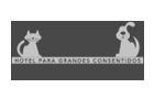 Agencia de Marketing Digital en Cancún - Vyp Logo - Iddeas Mkt Creative